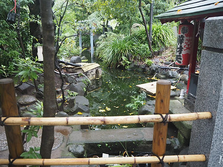atago-jinja japanese shinto shrine minato tokyo garden pond