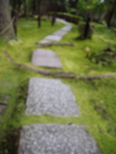 konchi-in buddhist temple kyoto japan moss garden