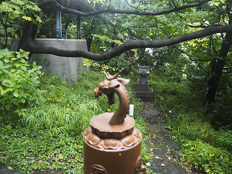 seisho-ji japanese buddhist temple tokyo garden shrine and dragon head