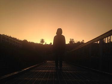 bondi to bronte walk waverly cemetery storm sunset