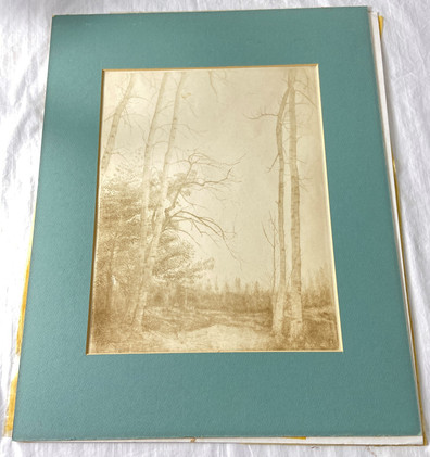 Signed Don Swann Limited Edition Etching