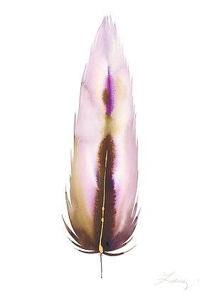 Lavender VI