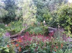 14. De tuin van Koos, Noord 96 op de grens met Krimpen aan de Lek