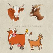 Illustrations pour les enfants sur le thème de la ferme par Claire Dujardin, illustratrice près de Chamonix