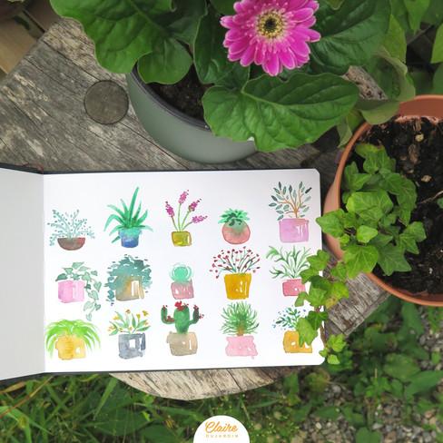Plant addict - Illustration aquarelle - Claire Dujardin