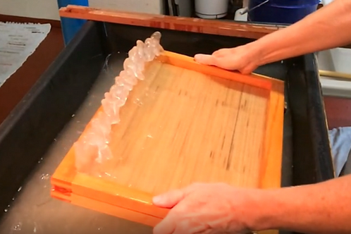 Japanese Papermaking with Kozo - Online Class