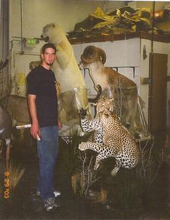 Polar Bea, Marco Polo, Leopards