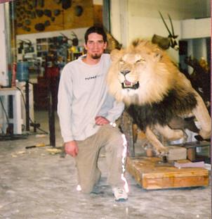 Running Lion