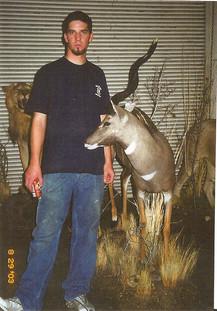 Lesser Kudu mount