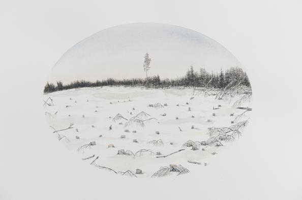 Sisu (detail), Kristin Bjornerud