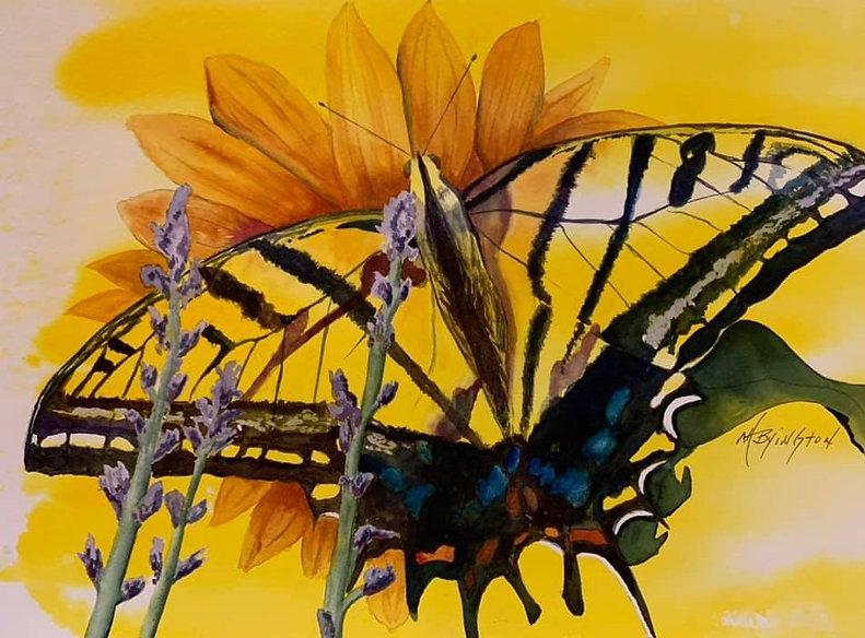 Swallowtail Butterfly.jpg