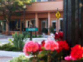 Main Street Downtown Sarasota
