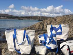 Bags at Ballyrisode near Schull