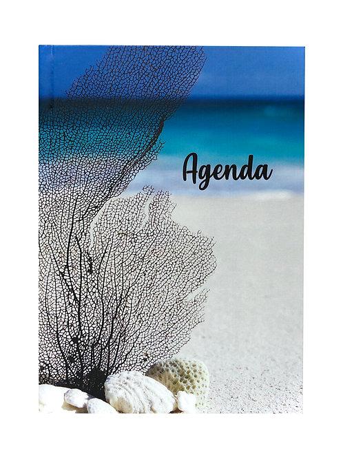 Agenda Brisa de Mar.
