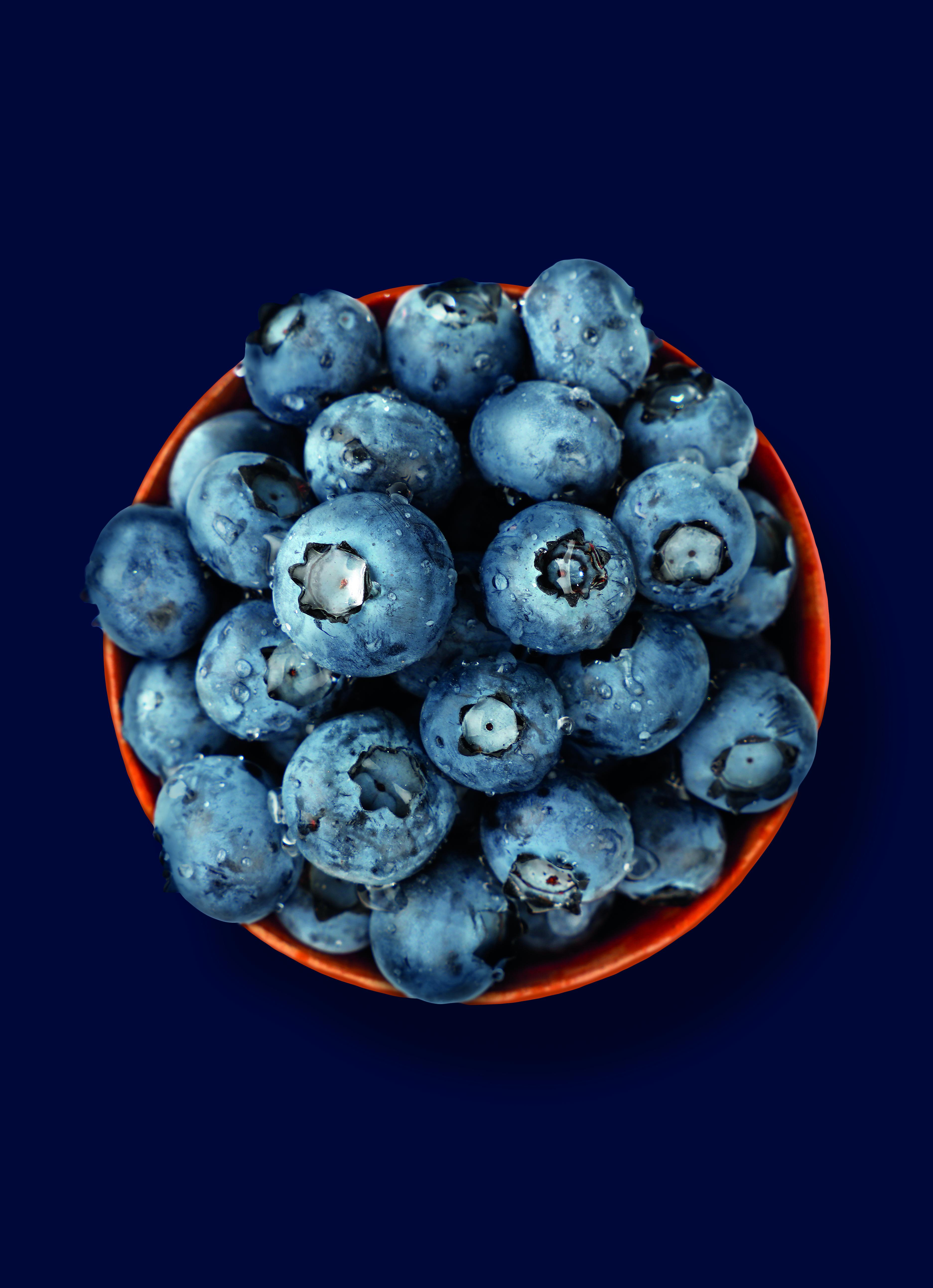 20190911_Blueberries_CMJN_300dpi_Blue