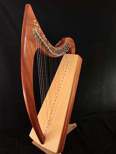 harpe celtique sylvestre charbin tuala