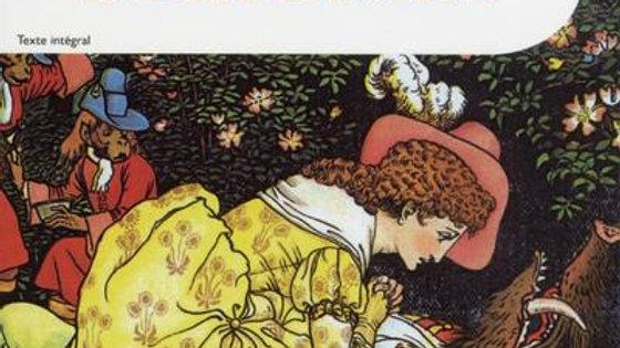 La belle et la bête / Mme Leprince de Beaumont