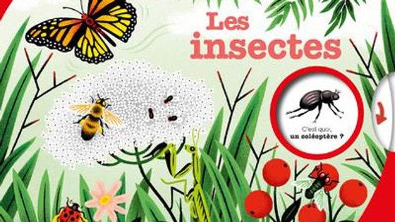 kididoc Les insectes