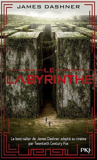 L'épreuve T.1 ; le labyrinthe