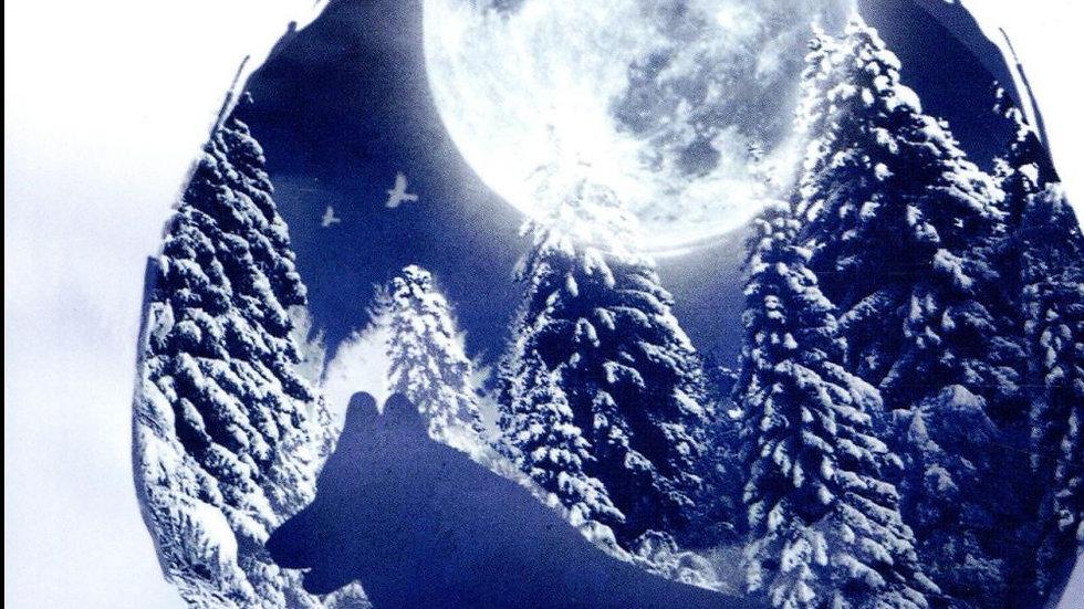 L'appel de la forêt - Jack London (édition Patrice Kleff)