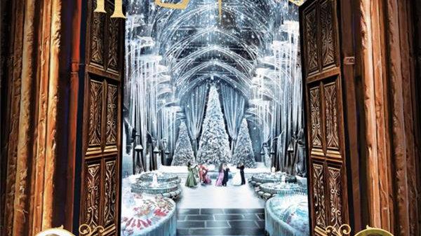 Harry Potter Noël à Poudlard - Le carnet magique