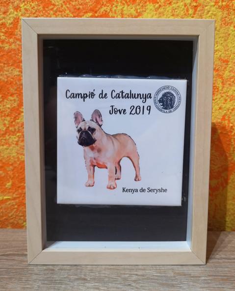 CAMPEON JOVEN CATALUÑA 2019