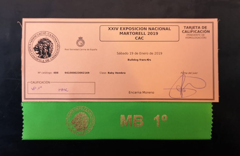 MB1/MMC - KENYA DESERYSHE