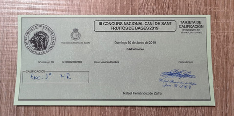 CONCURSO NACIONAL SANT FRUITÓS 2019