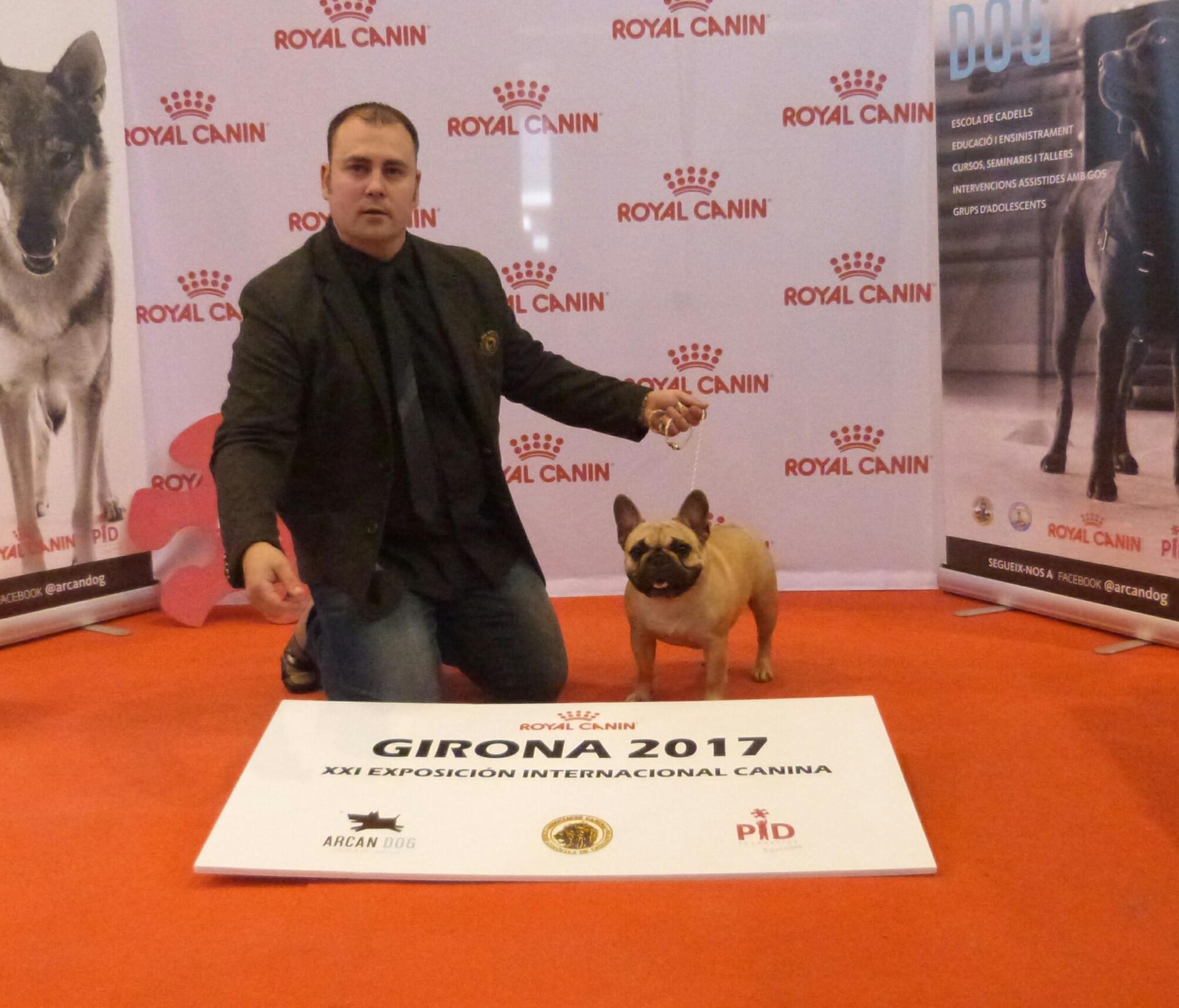 EXPOSICIÓN GIRONA 2017 EXC2/RCCJ