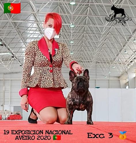 EXC.3-AVEIRO 2020- PORTUGAL