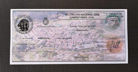 CONCURSO NACIONAL CAMPDEVÀNOL 2019