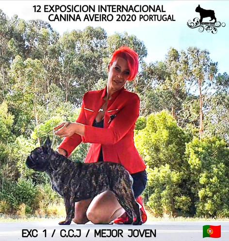 AVEIRO 2020 (PORTUGAL)