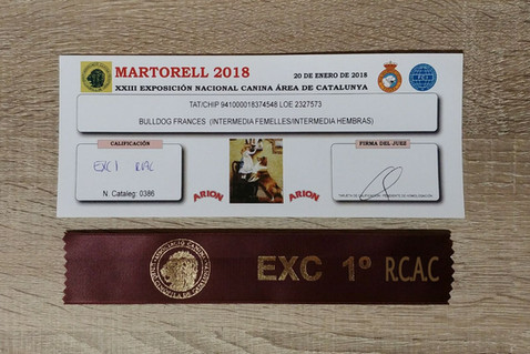 PARIS: EXC1- RCAC MARTORELL NACIONAL 2018