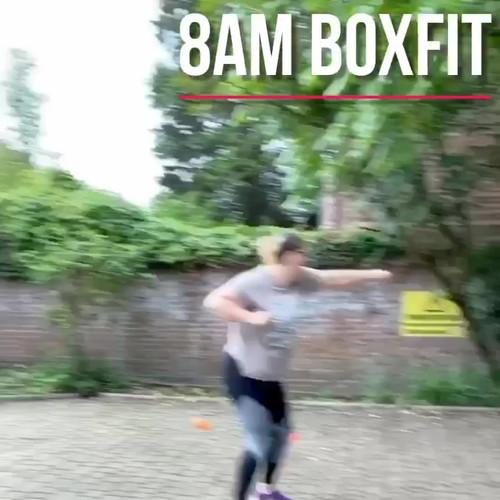 8am BoxFit