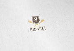 Логотип для Дрюплинского пищевого завода  - Media Quant Studio