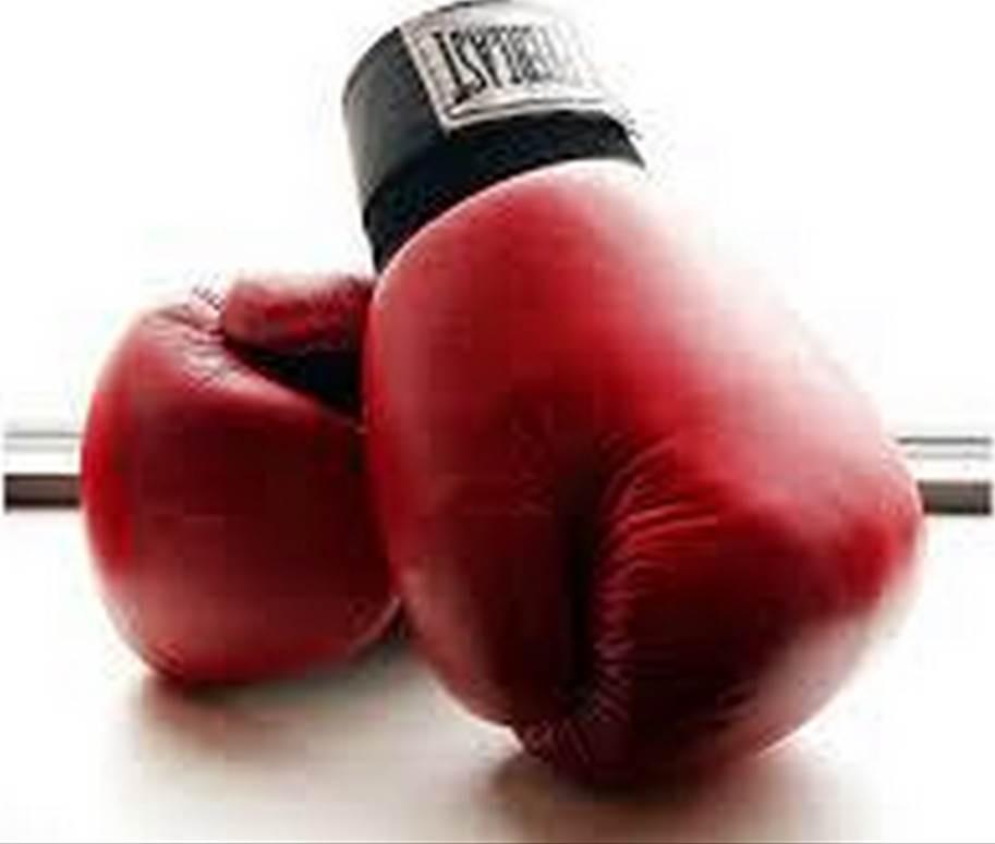Boxing Gloves_Large1.jpg
