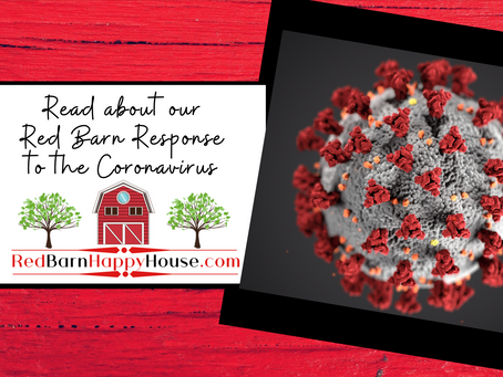 Our Red Barn Response to the Coronavirus