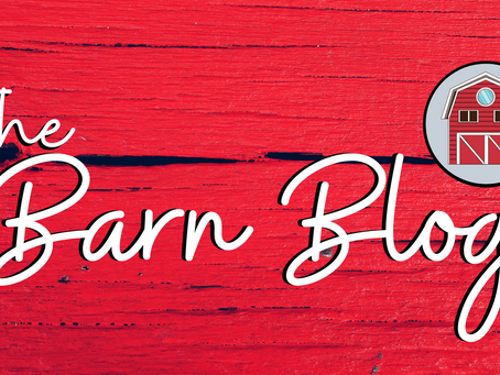 Welcome to the Barn Blog!