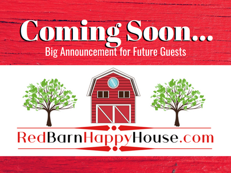 Coming Soon: Big Announcement for Future Guests