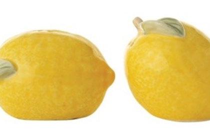 Stoneware Lemon Salt & Pepper Shakers, Set of 2