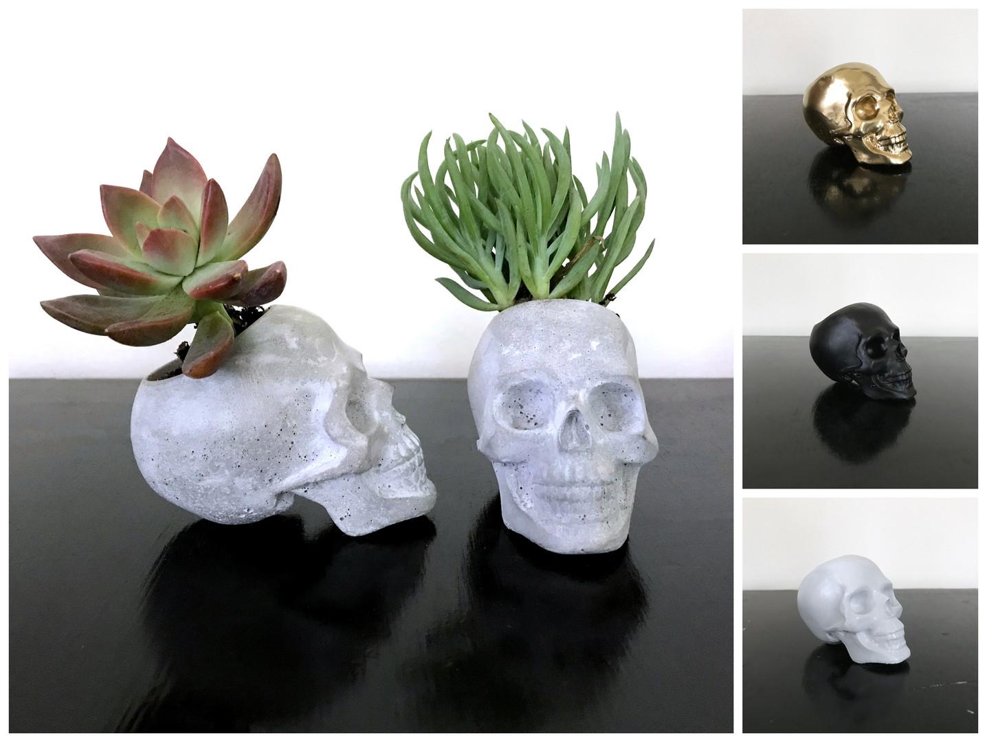 Small Skull Planter