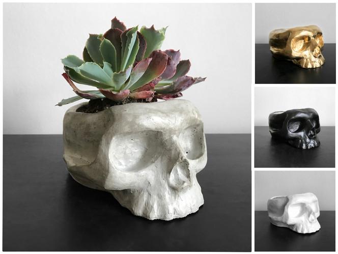 Medium Skull Planter