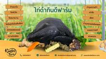 ไก่ดำ (ไก่กระดูกดำ) อีก 1 ทางเลือกของ อาหารบำรุงเลือด