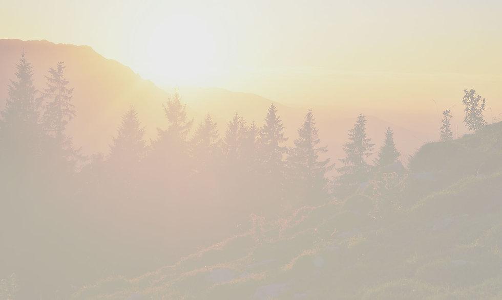 treeline2.jpg
