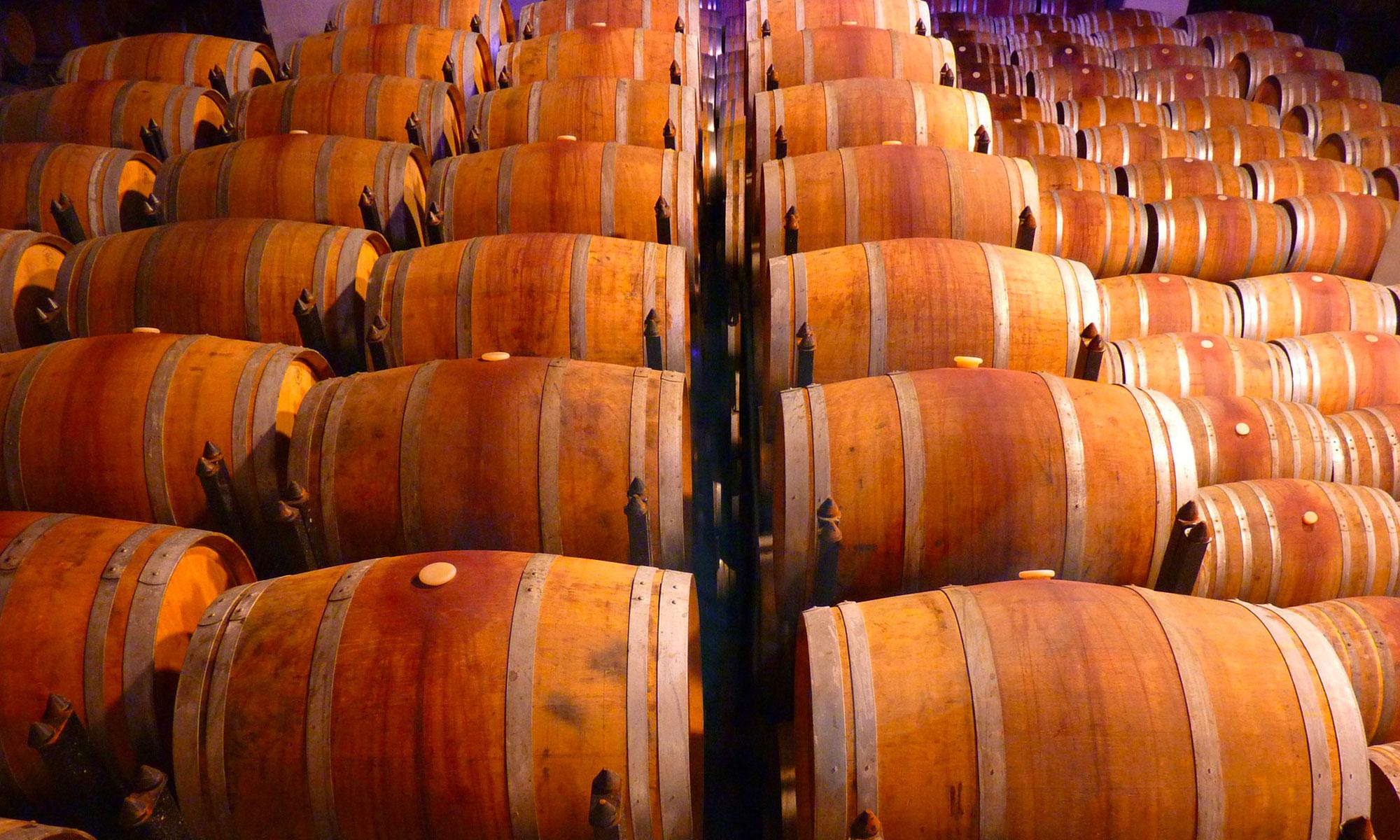 vini della Romangia in botti