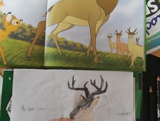 Beautiful drawing/Líníocht álainn