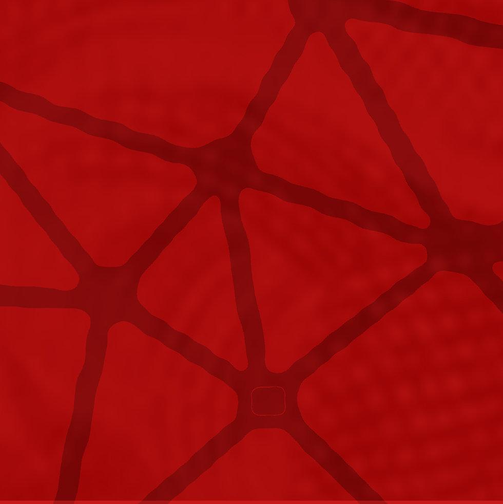 NEPLAC_ENCONTRO_quadrado.jpg