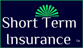 Short Term Insurance LOGO.jpg