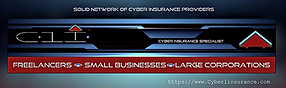 Cyber1web1.PNG