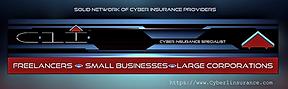 Cyber1web1.PNG